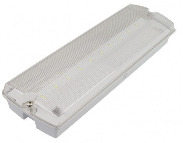LED Notleuchte Decken-/Wandmontage LENL-3W-3h-DW-IP65